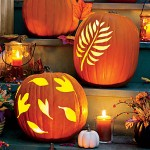 carved-pumpkins-display-m